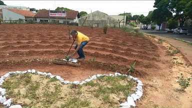Homem de Cianorte transforma terreno abandonado em jardim - Com autorização dos proprietários ele limpou o terreno que tinha virado um depósito de lixo.