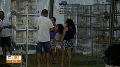 Exposição de aves exóticas chama atenção de público no Graciliano Ramos, em Maceió - Evento é organizado pela Associação dos Criadores de Aves Domésticas.