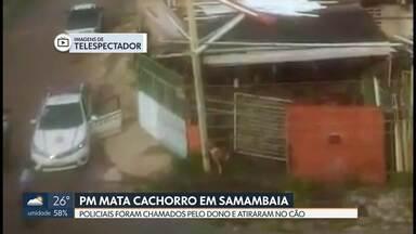 PM atira e mata cachorro em Samambaia - O dono do cão chamou os policiais, porque o animal teria atacado ele. Moradores fizeram imagens do momento em que o cachorro levou o tiro e morreu. Vizinhos disseram que o cachorro sofria maus-tratos.
