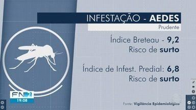 Índice de Breteau indica risco de surto de dengue em Presidente Prudente - Dados foram divulgados pela Vigilância Epidemiológica.