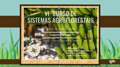 Confira a agenda de eventos rurais que acontecem em toda a Bahia - Entre os destaques tem a 1ª edição da Feira de Aves e Pequenos Animais de Serrolândia.