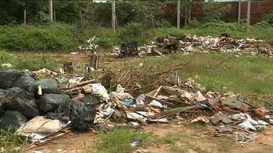 Aumento de chuva aumenta a proliferação do Aedes em São Luís - Chuva e lixo é uma mistura perfeita para a formação de criadouros do mosquito Aedes na capital.