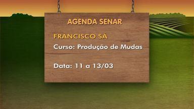 Confira a agenda de cursos do Senar em cidades do Norte de Minas - Curso de produção de mudas é realizado em Francisco Sá, de 11 a 13 de março.