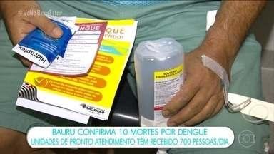 Bauru confirma 10 mortes por causa da dengue - Outras três mortes ainda são investigadas. Informação foi dada pela Secretaria de Saúde da cidade.