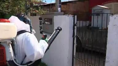 Possível caso de dengue preocupa moradores em bairro da Zona Norte de Porto Alegre - Seria o segundo caso da doença contraída dentro da Capital gaúcha.