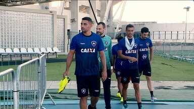 Botafogo terá a estreia de Diego Souza no clássico contra o Fluminense - Botafogo terá a estreia de Diego Souza no clássico contra o Fluminense