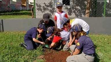 Escoteiros de Sorocaba fazem ação de plantio de árvores - Nesta terça-feira (19), em todo mundo voluntários fazem ações para recuperar a biodiversidade. Em Sorocaba (SP), o plantio foi antecipado por um grupo de escoteiros.
