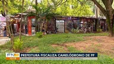 Prefeitura avalia saída de boxistas do Camelódromo de Presidente Prudente - Decisão judicial afeta mais de 40 comerciantes.