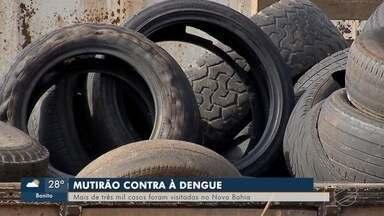 Mutirão vistoria mais de três mil casas no Nova Bahia, no fim de semana - Capital já tem mais de 11 mil notificações este ano.