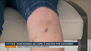 Funcionária da Copel é atacada por um cachorro no bairro Pinheirinho em Curitiba - Veja quais são os cuidados para evitar esse tipo de acidentes.