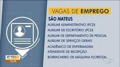 Confira as vagas de emprego abertas em São Mateus, ES - Veja as vagas do Sine.