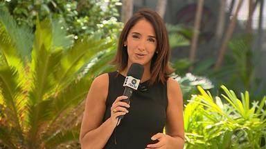 Confira os destaques para o mata-mata das quartas de final do Gauchão 2019 - Assista ao vídeo.