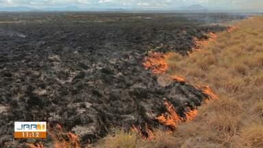 Norte de Roraima enfrenta situação alarmante de incêndios florestais - Prefeitura de Amajari já decretou emergência devido ao alto número de queimadas. Defesa Civil relata ações na região.