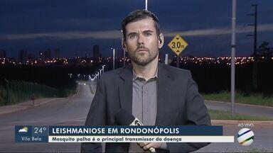 Dois casos de leishmaniose em humanos são registrados este ano em Rondonópolis - Dois casos de leishmaniose em humanos são registrados este ano em Rondonópolis