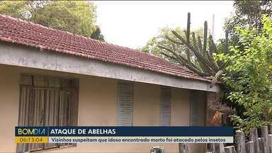 Homem encontrado morto pode ter sido vítima de ataque de abelhas - Corpo do idoso estava na casa dele, no bairro Santa Quitéria, em Curitiba.