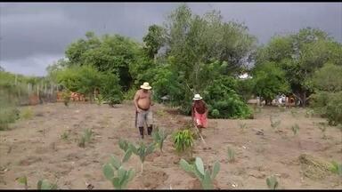 Previsão do tempo: chuva em regiões distintas trazem esperanças para agricultores baianos - Veja as informações da meteorologia com Thaic Carvalho.