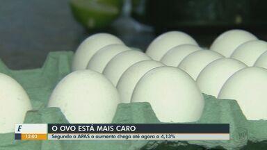 Preço do ovo está 4,13% mais caro nos supermercados de São Carlos - Produto frequente na alimentação teve reajuste e deve aumentar ainda mais.