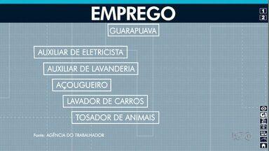 Veja as vagas de emprego em Guarapuava - Os interessados precisam ir até a Agência do Trabalhador.