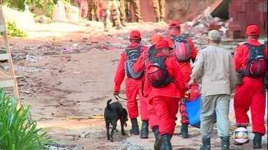 Boletim: Sete mortes foram confirmadas em desabamento de prédios na Muzema, no Rio - Bombeiros trabalham nas buscas por 12 desaparecidos. Nove pessoas ficaram feridas. Os dois prédios desabaram na manhã de sexta-feira (12).