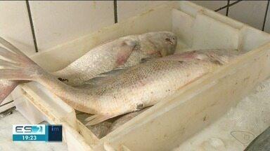 Próximo da Páscoa, venda de peixes aumenta em Cachoeiro de Itapemirim, ES - Católicos têm a tradição de não comer carne vermelha.