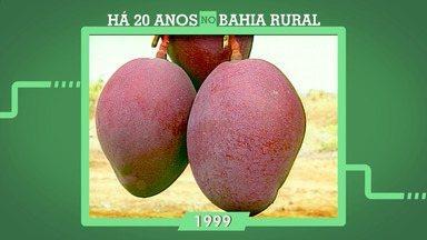 Há 20 anos no Bahia Rural: relembre como se desenvolveu a produção agrícola da Bahia - O programa neste ano completa também mais de 1000 episódios.