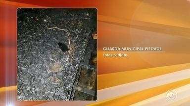 Incêndio em casa de Piedade pode ter sido causado por celular - Em Piedade (SP), um morador do bairro Sarapuí dos Torres deixou o celular carregando em cima da cama e foi para igreja. O aparelho então teria causado um incêndio na casa.