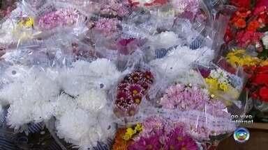 Feira das Flores é realizada em Rio Preto - A Feira das Flores está acontecendo em São José do Rio Preto (SP) nos dias 08, 09, 10 e 11 de maio das 08h às 17h.