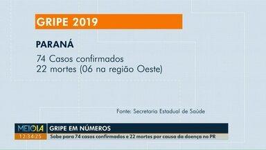 Paraná registra 74 casos de gripe neste ano - 22 pessoas já morreram por causa da doença.