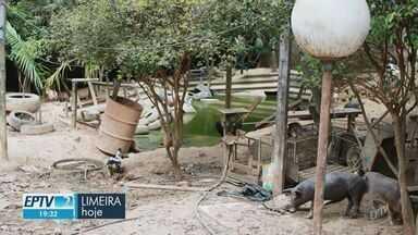 Prefeitura de Limeira interdita asilo clandestino no Bairro do Porto - Local não tinha autorização da Vigilância Sanitária para funcionar.