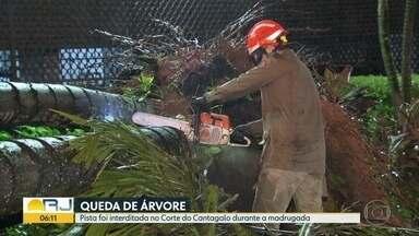 Queda de árvore fecha pista do Corte do Cantagalo - Bombeiros e CET-Rio reabriram a via, durante a madrugada.