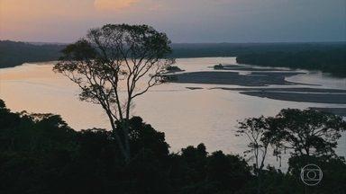 """Conheça o coração da floresta amazônica do Equador - Da cidade de Francisco de Orellana, o Globo Repórter segue pelo Rio Napo até o coração da floresta, onde não se chega de carro. São quatro horas de viagem até o território dos índios """"kichwas"""", dentro de um parque nacional protegido."""