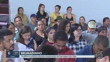 Audiência pública discute rompimento da barragem da Vale em Brumadinho, na Grande BH - Reunião está sendo realizada na CPI da Assembleia Legislativa.