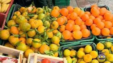 Confira dicas de como comprar frutas e gastar menos - Assista ao vídeo.