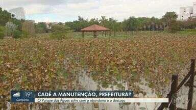 Situação do Parque das Águas gera reclamação de usuários em Campinas - Moradora chegou a se machucar após cair em um buraco que fica em uma ponte do parque.