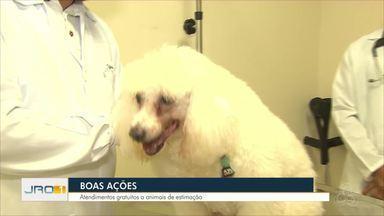 Boas Ações: Atendimentos gratuitos a animais de estimação - Boas Ações: Atendimentos gratuitos a animais de estimação