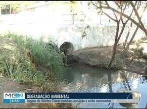 Moradores denunciam degradação e assoreamento de lagoas em Montes Claros - Na lagoa do Bairro Interlagos moradores afirmam que Copasa joga esgoto no local.