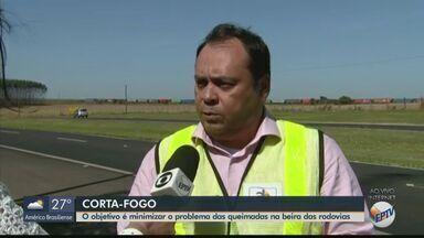 Concessionárias realizam Operação Corta-Fogo na região - Objetivo é minimizar o problema das queimadas na beira das rodovias.