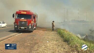 Incêndios aumentam 716% em Campo Grande no mês de junho - Incêndios aumentam 716% em Campo Grande no mês de junho