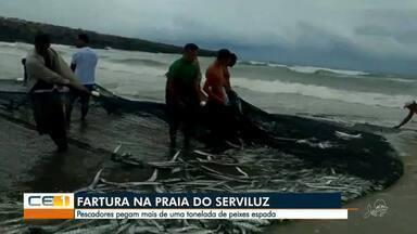 Pescadores pegam mais de uma tonelada de peixe espada no Serviluz - Saiba mais em g1.com.br/ce