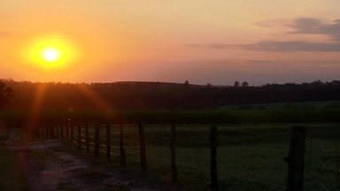 Assista ao bloco 02 do Caminhos do Campo do dia 30 de junho de 2019 - Os avanços da integração lavoura, pecuária e floresta no Paraná; e o cooperativismo como alternativa para o pequeno produtor de leite competir em um mercado cada vez mais exigente