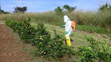 A tecnologia e o uso mais seguro dos agrotóxicos