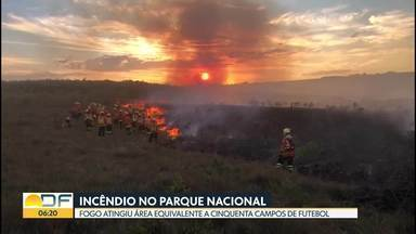 Incêndio atingiu Parque Nacional na tarde desta segunda (8) - Fogo destruiu área equivalente a cinquenta campos de futebol.
