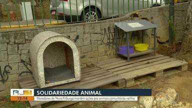 Moradores de Nova Friburgo mantém ações pra animais comunitários no frio - Assista a seguir.