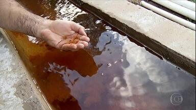 Água com excesso de ferro tem coloração avermelhada em Mineiros, Goiás - Segundo o geógrafo Zaqueu Henrique de Souza, as bactérias geram o lodo que dá a coloração avermelhada na água.