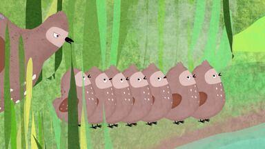 O Novo Amigo - Pikkuli quer um companheiro para brincar, mas todos estão ocupados. Na lagoa, ele encontra Honkkeli, mas o pássaro da costa está perto de se afogar. Pikkuli poderá ajudar o amigo?