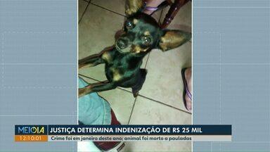 Mulher que matou cachorra a pauladas em Maringá é condenada a pagar R$ 25 mil a dono - Crime foi em janeiro de 2019.