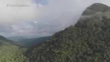 Conheça o Parque Estadual da Serra do Brigadeiro em Minas - Equipe do Terra de Minas mostra a fauna e flora exuberantes do parque na região da zona da mata mineira.