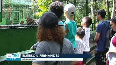 Férias: zoológico de Santarém é uma das opções de passeios para crianças - Além de estar em contato com a natureza, crianças podem aprender mais sobre os animais da região.