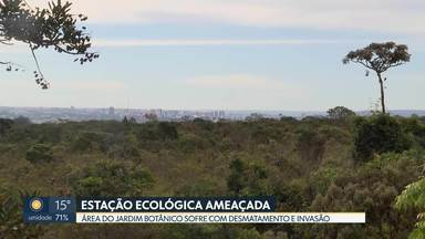 Ibram descobre que moradores do Lago Sul estão aumentando lotes - De acordo com análise, lotes estão se expandindo sobre áreas de proteção ambiental.