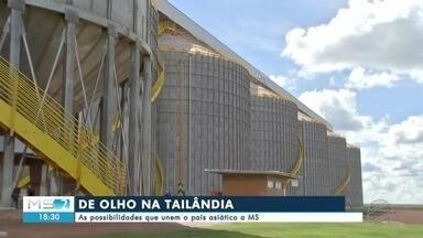 Negócios que unem Tailândia a Mato Grosso do Sul - Em Mato Grosso do Sul.